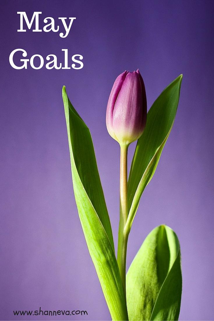 May goals set