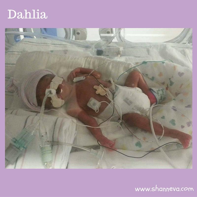 Dahlia hospital