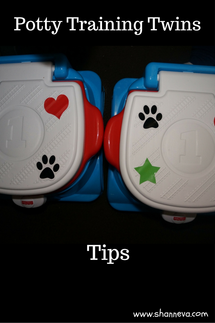 Tips to Potty Training Twins or Anyone