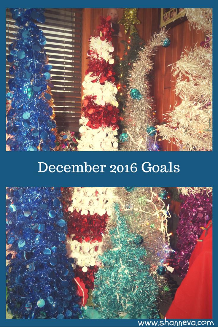Goals for December 2016