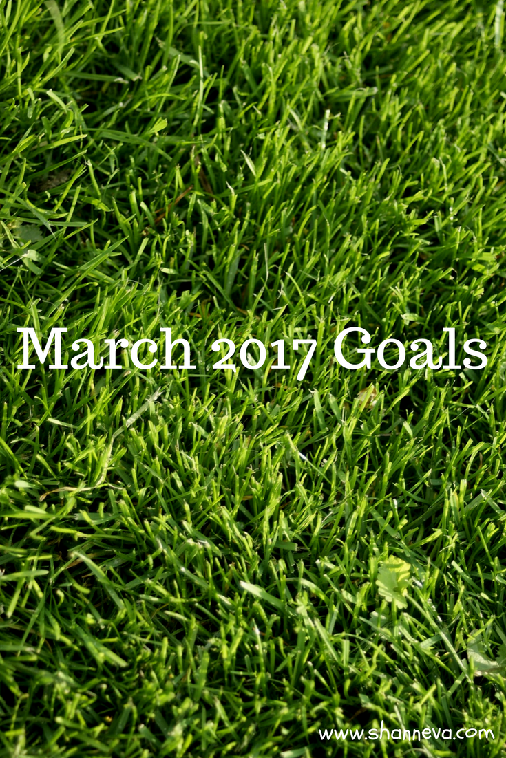 Get motivated and organized with my March 2017 goals.