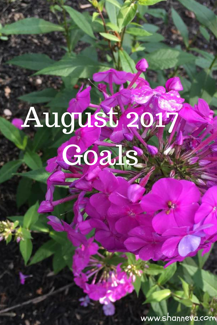 August motivation with some goals for the month in the area of personal, family and business