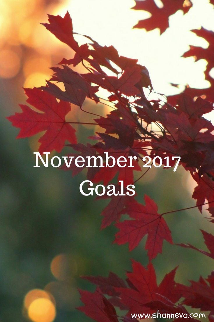 November 2017 goals. Family goals, personal goals, and blog goals to keep accountable. #monthlygoals