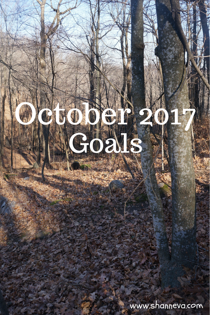 Goals for October 2017. Personal, Family, and blog categories. Organize your own goals by month.