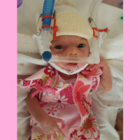 Lucia Wren, how to survive NICU life
