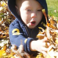 Fall Family FAvorites