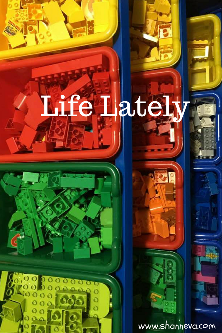 life lately #familylife #organizing #playing #reading #learning