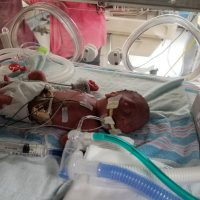 NICU Dads: An Advocate and Support System