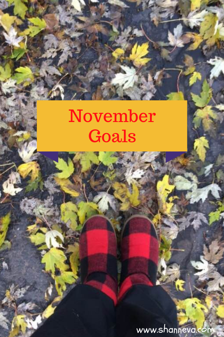 November 2018 goals #familygoals #personalgoals #professionalgoals #healthgoals