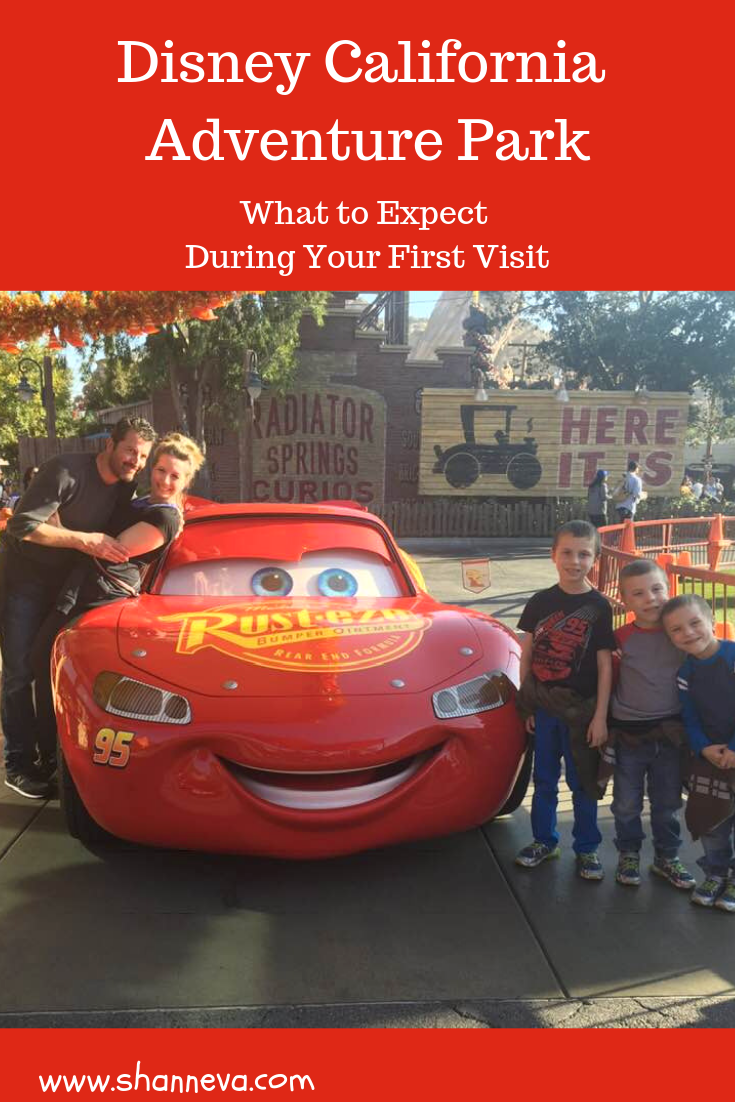 Disney California Adventure Park: What to Expect