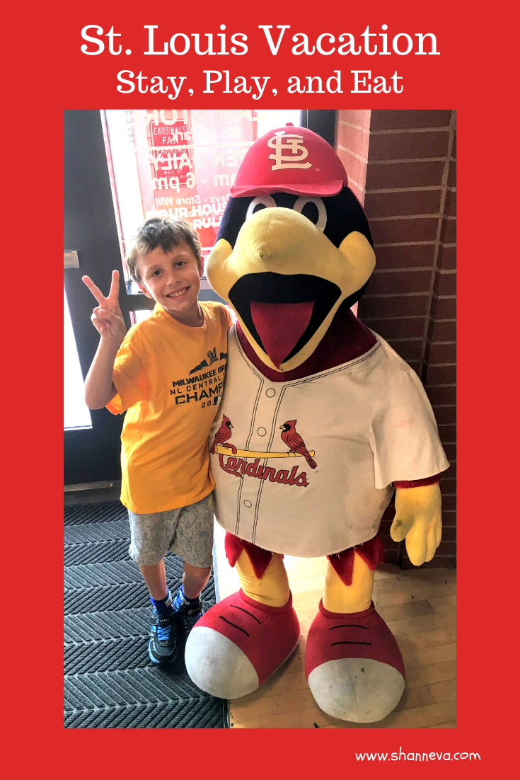 St. Louis is the perfect family vacation spot. Lots of food, fun, and adventure. Museums, the Arch, the Zoo, and baseball.