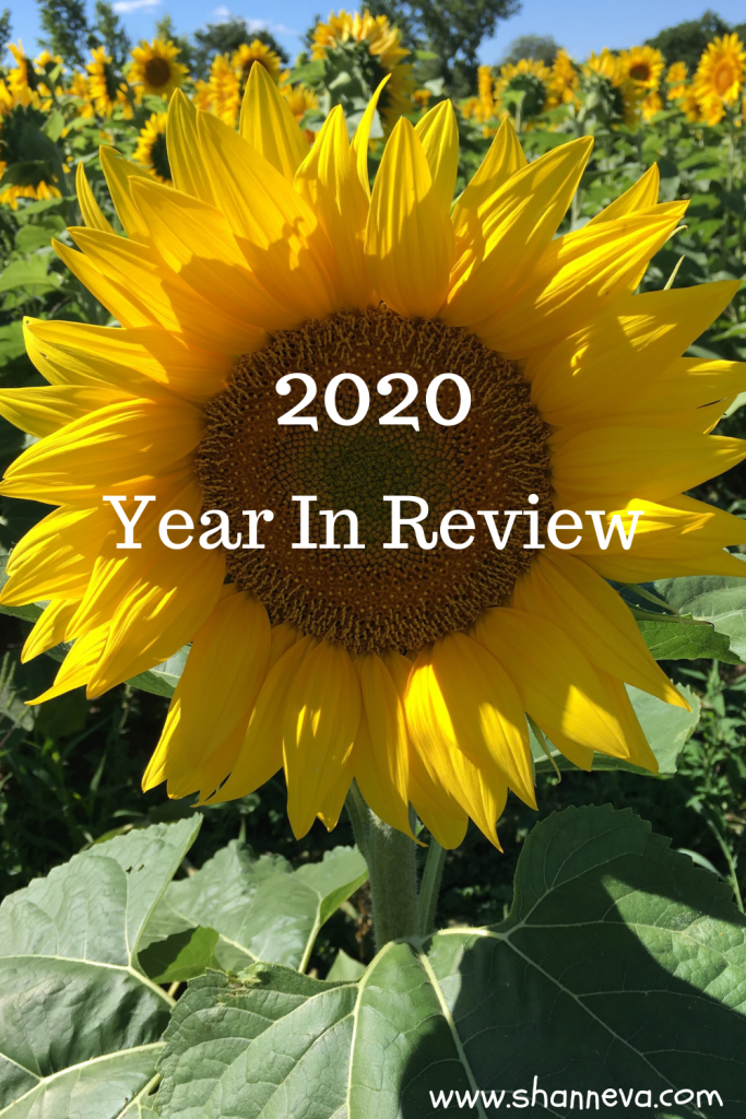 2020 Year In Review: The highlights of this past year